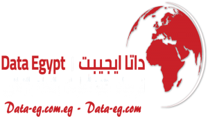 Data Egypt Company Logo
